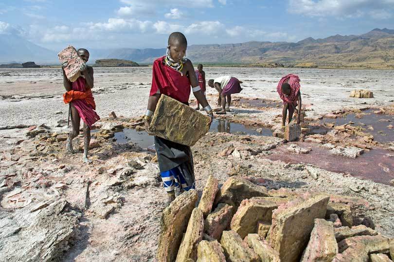 Massai woman and men work togehter <p>to extract the salt slabs